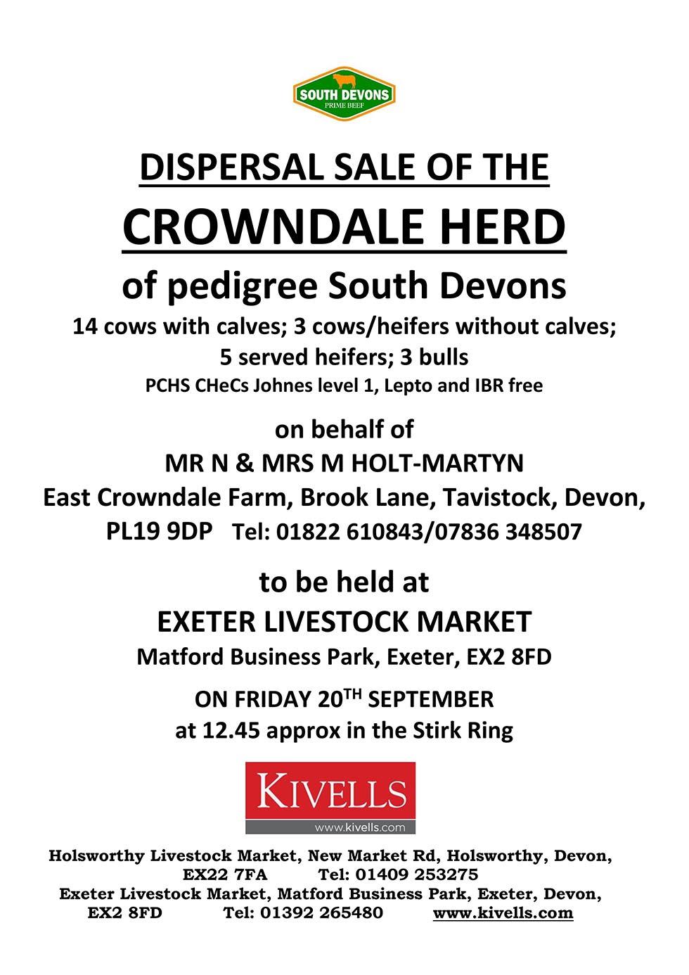 South Devon Herd Book Society | South Devon Bulls | South ...