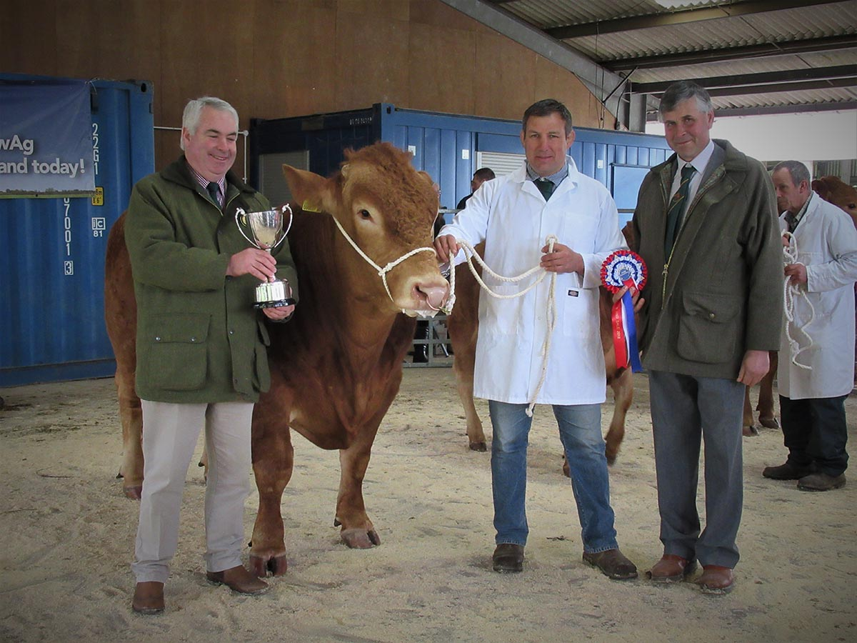 Breed Champion: Broadwood Zeus 1